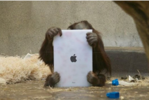 ipad for apes
